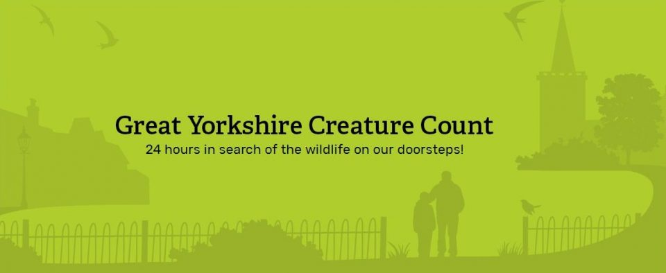 Great Yorkshire Creature Count